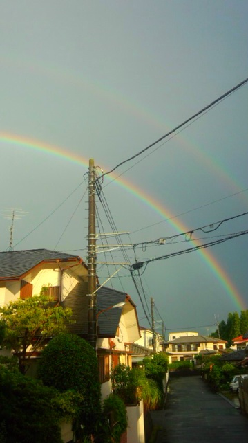 久しぶりに虹を見ました…