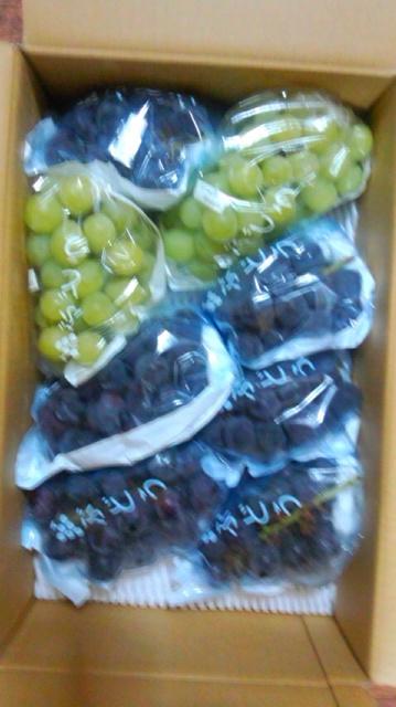 信州の葡萄が届きました…